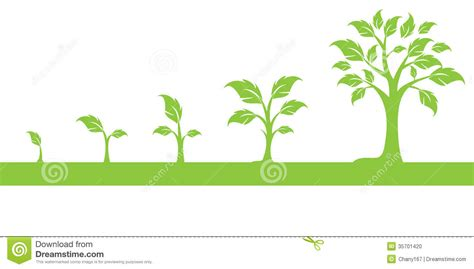 grow tree leaves grow clipart clipground