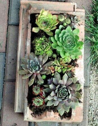 Garten Gestalten Mit Dachziegeln by Alte Dachziegel Als Gartendeko Nutzen Frag Mutti