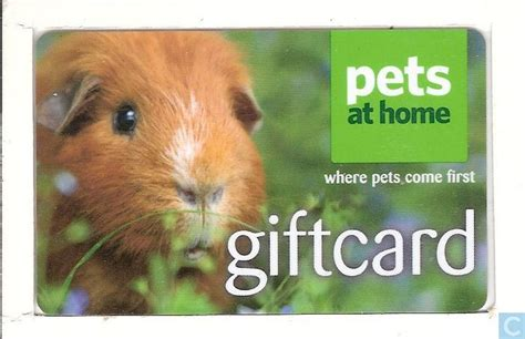 At Home Gift Cards - pets at home pets at home catawiki