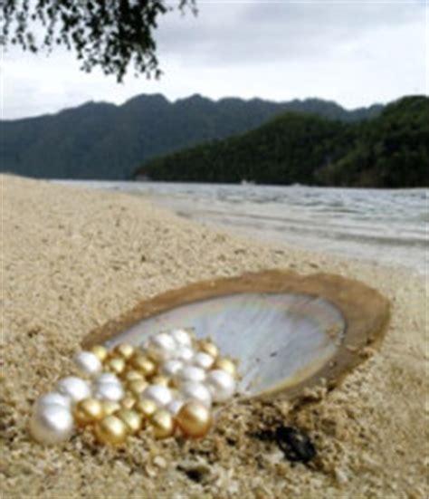 Mutiara Air Tawar Besar Diameter 14mm pearls and gem expert harga perhiasan mutiara lombok di toko emas terpercaya