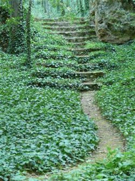 ivy garden