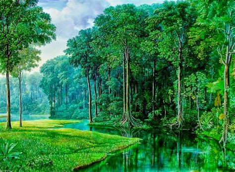 imagenes de paisajes naturales bosques cuadros pinturas oleos fotografias de paisajes