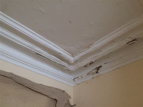 Ceiling And Cornice Cornice Repair And Lath Plaster Ceiling Repairs To A