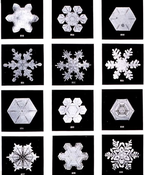 snowflake pattern coffee filter flakes are fun cranial hiccups