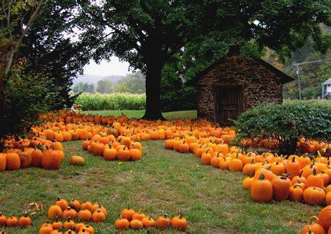 The Farm House Nashville by Pumpkin Patch Halloween Autumn Wallpaper 2205x1565
