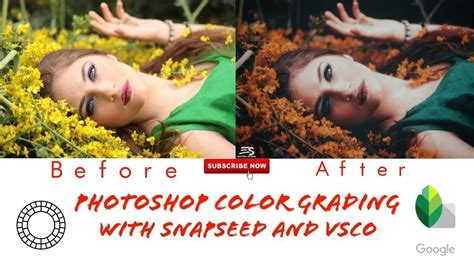 snapseed tone tutorial snapseed photo editing tutorial photoshop color grading