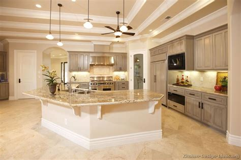 Kitchens Designs Pictures Pictures Of Kitchens Traditional Gray Kitchen Cabinets