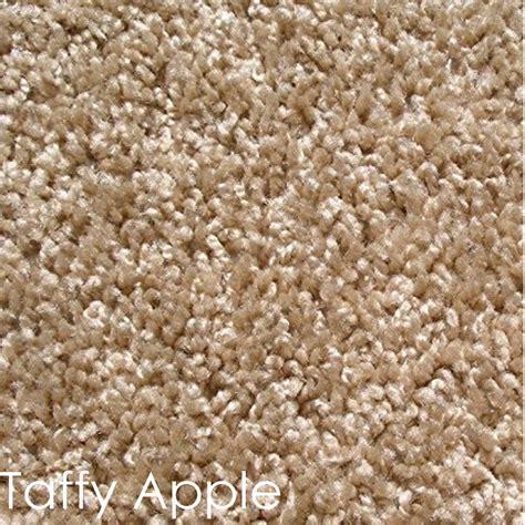 Indoor Area Rugs Cornerstone Frieze Area Rug Cornerstone Frieze Carpet Indoor Frieze