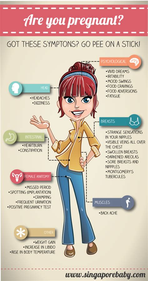 pregnancy symptoms early signs  pregnancy infographic