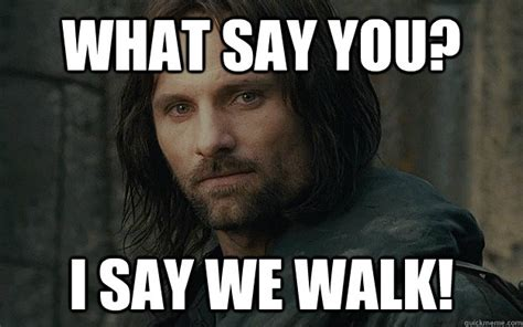 Aragorn Meme - what say you i say we walk walk for life aragorn