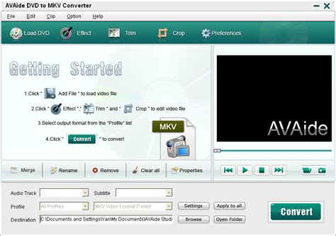 format dvd mkv avaide dvd to mkv converter convert dvd to mkv
