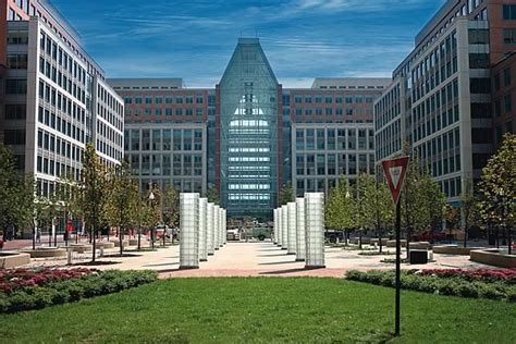 Us Patent Office by Cognitive Design 187 Exles
