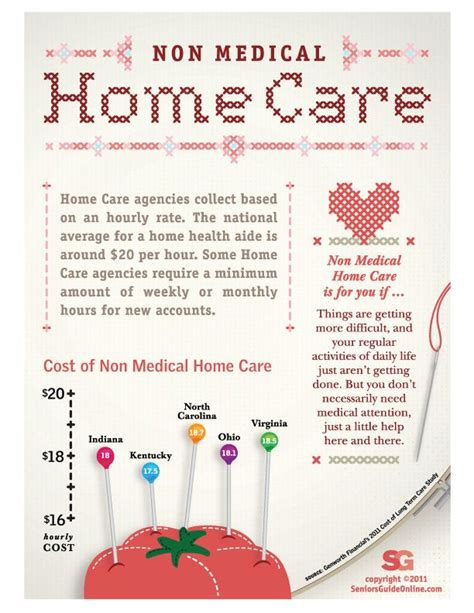 non home care business plan template best