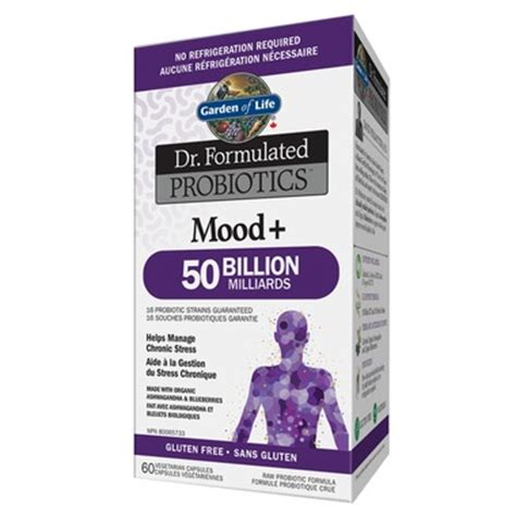 Garden Of Probiotics Mood Buy Garden Of Dr Formulated Probiotics Mood At Well