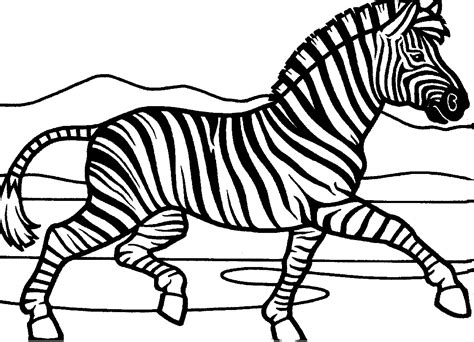 zebra coloring page free printable zebra coloring pages for animal place