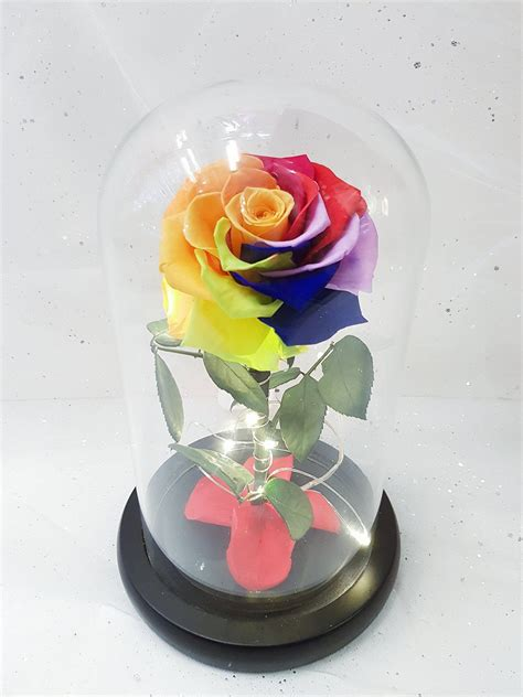 Flower In Dome And The Beast Gift and the beast glass dome rainbow the singapore florist