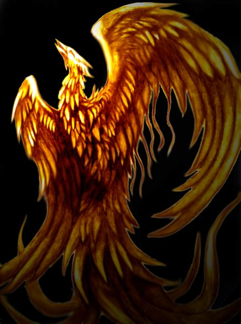 tattoo phoenix flames rising phoenix by thelaughingvixen on deviantart