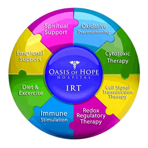 hoping for a cure alternative cancer treatment in mexico books the oasis of