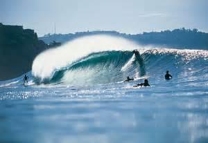 Blinds In San Diego San Diego Surfing At Black Beach Blindsgalore Blog