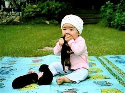 does china eat dogs do eat baby