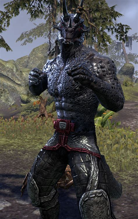 Where Did Elder Earn His Mba by Is It Possible To Make An Argonian Attractive In Eso