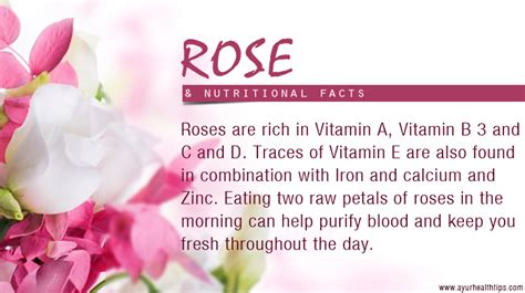 Eat At Raoaes Ae If You Can by Nutrition And Health Facts Of Roses