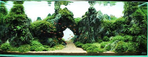 aquascapes   aquarium info