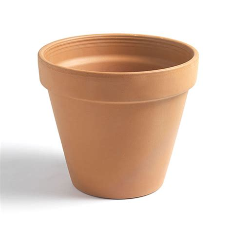 terracotta pots buy classic terracotta pot delivery by crocus