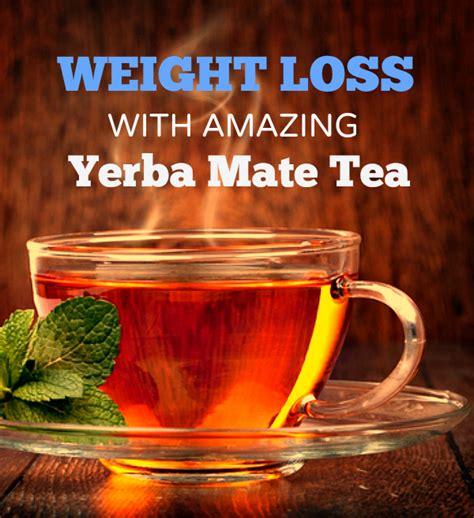 Yerba Mate Weight Loss by Yerba Mate Amazing Herbal Tea For Weight Loss
