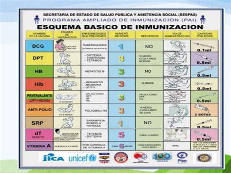 cuadro de vacunas esquema de vacunas