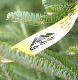 noble christmas mountain noble mountain tree farm