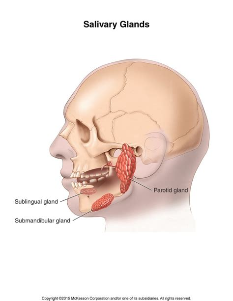 Foxx Has Surgery For Gland Problem by Parotid Gland Removal Parotidectomy Tufts