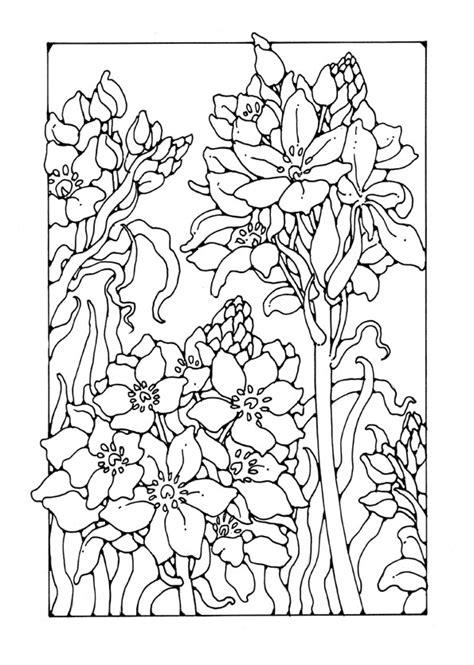 advanced car coloring pages free coloring pages of advanced flowers