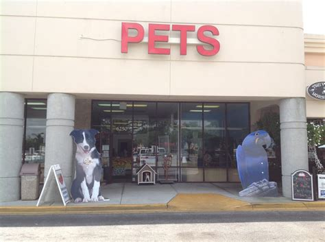 family pet center 31 photos pet stores 6230 n
