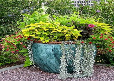 Garden In Pots Ideas Container Gardening Plants Gardening Ideas For Flowers 187 Garden Container Ideas Potted