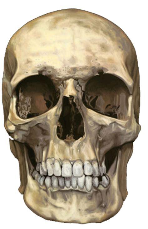tutorial photoshop skull face super photoshop tutorials