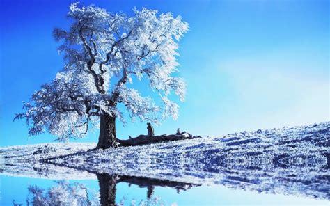 imagenes bonitas de paisajes de invierno paisajes hermosos de invierno imagui