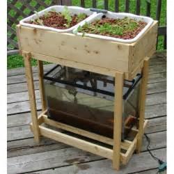 home aquaponics aquaponics home system diy aquaponics swiftly build
