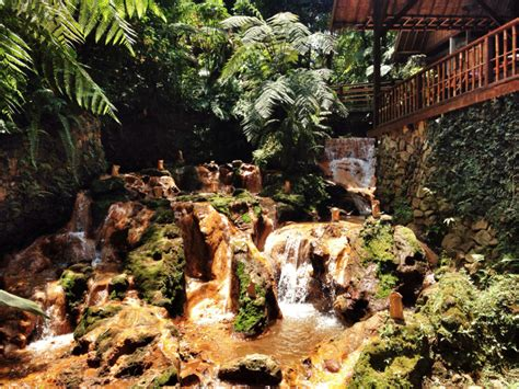 Nature Stek Bandung kung daun bandung tempat makan dengan konsep back to
