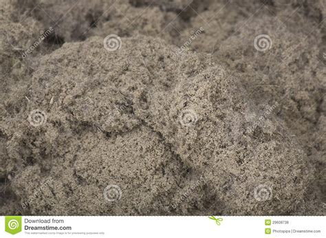 house of dust house dust stock photo image of cleaner wipe hygiene 29608738