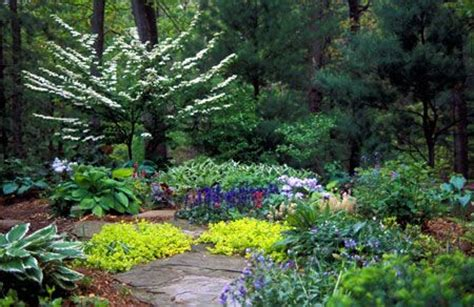 Grass Alternatives For Backyards by 17 Ideas About Grass Alternative On Succulent