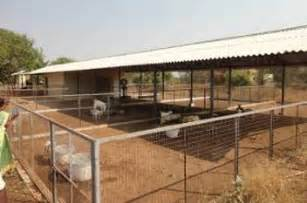 Types Of Dairy Barns Web Design Complete Goat Shed Construction In India