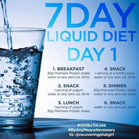 Liquid Nutrition Detox Plan by 25 Best Ideas About Liquid Diet Plan On