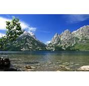 Wallpaper Nature River USA Wyoming National Park