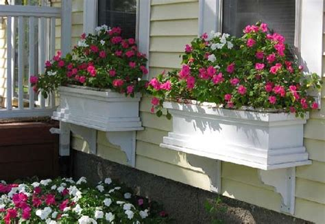 wooden window boxes ensure lasting beautification of your house with