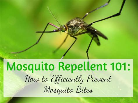 get away repellent best mosquito repellent guide pest repeller center