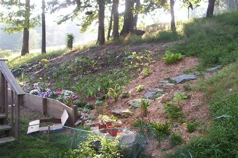 Landscape Pictures Slope Step By Step Ideas For Landscaping