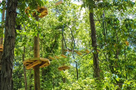 walmart country treetops floating treetops aerial park 19 ozark outdoors riverfront resort