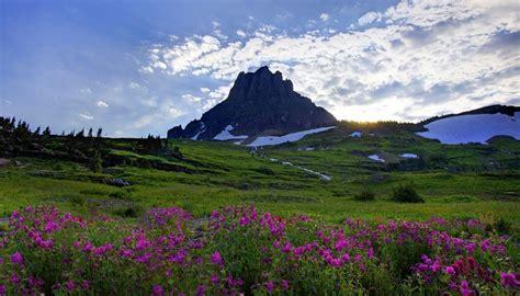 imagenes de paisajes para fondo de pantalla de celular estos paisajes con flores para fondo de pantalla es para