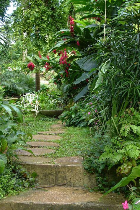 """Wandering Among the Plants at Hunte's Gardens, Barbados"
